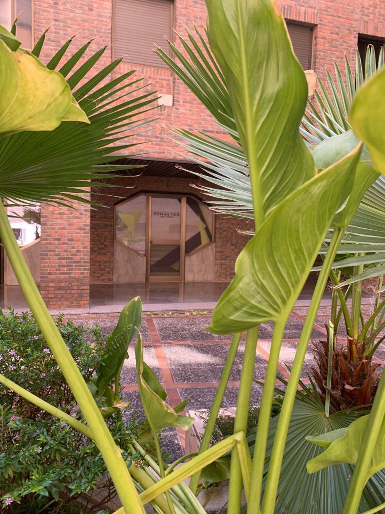 Puerta de la sede de sevilla